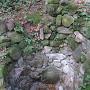 大松山城の井戸