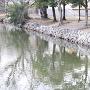 現存する石垣(奥平屋敷跡)