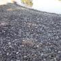 南池州浜の一升石