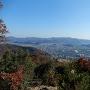 城域からの景色