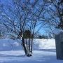 碑が雪に埋もれるも