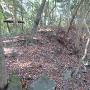 本丸東側の腰巻石垣と土塁