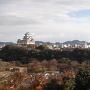 男山からの全景