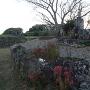 石垣とホネカミ地蔵