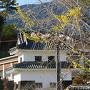 外堀跡から南隅櫓(大洲小学校・幼稚園付近)