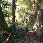 平井丸の西側の石垣