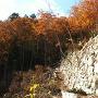 大石垣と紅葉と