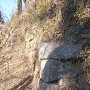 本丸壁面の石垣