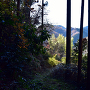 登城道からの眺望