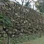 本丸北側の石垣其の四