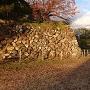 本丸南側の石垣其の壱