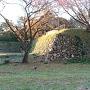 本丸南側の石垣其の四