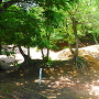 城址風景(東虎口付近)