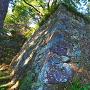 石垣(北の丸東面)