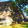 本丸南面の石垣と空堀