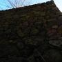 石垣(本丸北面)