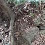 三の山 石垣②
