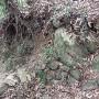 三の山 石垣⑤