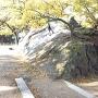 和歌山城南にある岡公園の露出岩