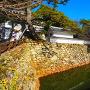 袖池と石垣