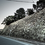 二ノ丸東側石垣