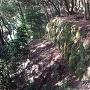 三の丸櫓台石垣