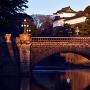 元旦の正門石橋と伏見櫓