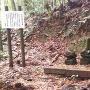 初代城主 毛利時元の墓