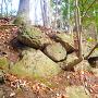 西出丸下の石垣跡
