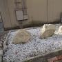 石垣の石 (桃山小学校)