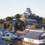 掛川城遠景