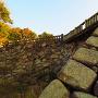 鉄門跡石垣(川側)