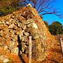 本丸東南角の石垣