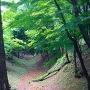 岡崎城空堀