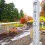 白山神社跡(35.700174, 136.476046)