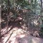 左近屋敷跡と腰曲輪との境界付近
