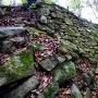 二の丸側石垣