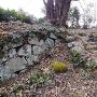本丸の石積みと石段