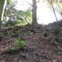東腰曲輪下の石垣
