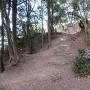 大手桝形への石段(二の丸から)
