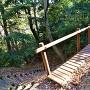 竪堀に架かる木橋