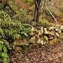 登城口付近の石積