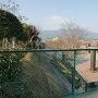 妙住寺の裏側