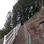 この石段をのぼります。