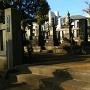 岡野家墓所(市指定史跡)