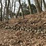 石垣@飛騨の丸下