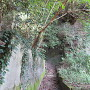 矢倉場(曲輪1)への登城道