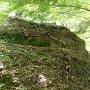 東の丸で見られる石垣