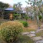 三の丸 御茶室「鷺庵(ろあん)」門前より 2017