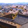 「ニの櫓」屋根と、「西の丸」「菱の門」方面